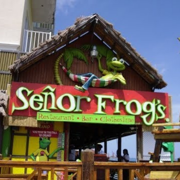 senor frogs bahamas